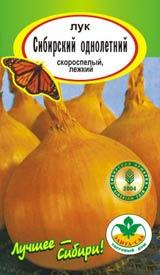 Лук сибирский однолетний выращивание 3